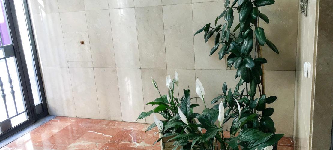 residencia-salamanca-azafranal-23